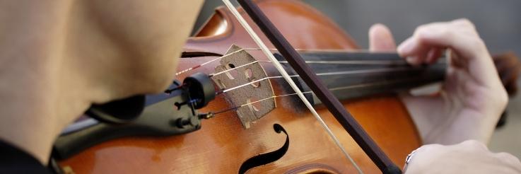 Geigenspieler. Foto: Fotolia (Jeff Davies)